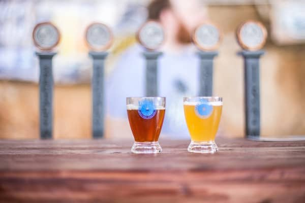 Sample cups at Bloomington Craft Beer Festival
