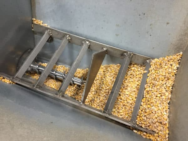 Locally grown corn, locally malted by Sugar Creek Malt Co., being milled.